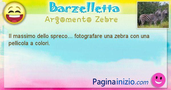 Barzelletta argomento Zebre: Il massimo dello spreco... fotografare una zebra con una ... (id=2097)