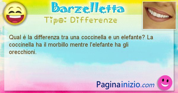 Differenze: Qual è la differenza tra una coccinella e un ... (id=1441)