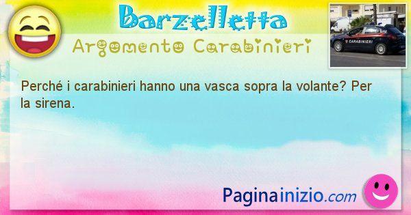 Domanda argomento Carabinieri: Perché i carabinieri hanno una vasca sopra la volante? ... (id=1352)