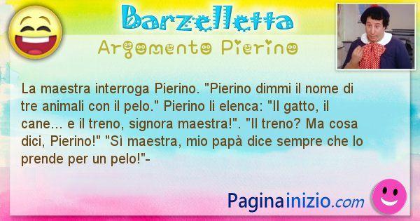 Barzelletta argomento Pierino: La maestra interroga Pierino. Pierino dimmi il nome ... (id=2635)
