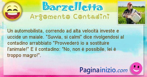 Barzelletta argomento Contadini: Un automobilista, correndo ad alta velocità investe e ... (id=1531)