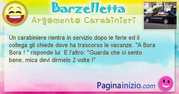 Barzelletta argomento Carabinieri: Un carabiniere rientra in servizio dopo le ferie ed il ... (id=1805)