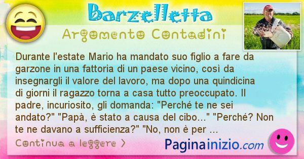 Barzelletta argomento Contadini: Durante l'estate Mario ha mandato suo figlio a fare da ... (id=2364)