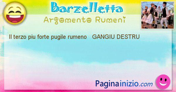 Come si chiama argomento Rumeni: Il terzo piu forte pugile rumeno   GANGIU ... (id=416)