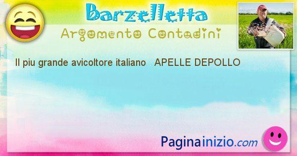 Come si chiama argomento Contadini: Il piu grande avicoltore italiano   APELLE ... (id=495)