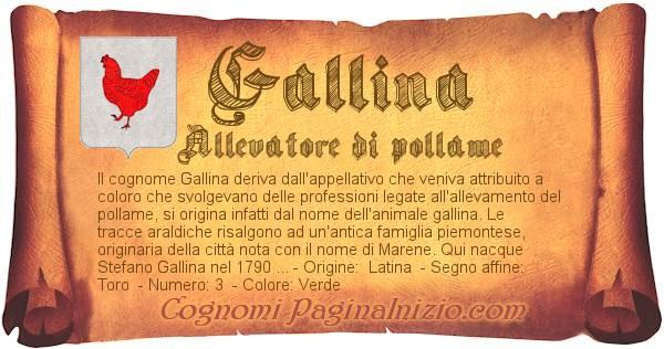 Nome Gallina