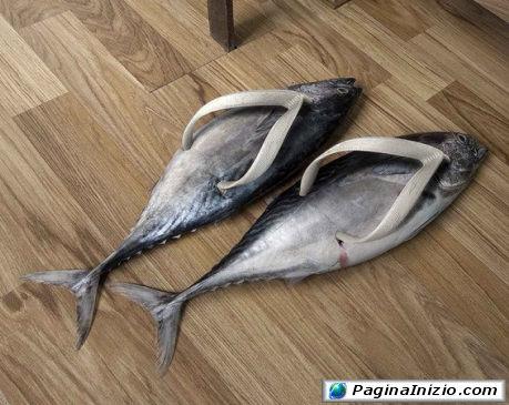 Due pesci...fuor d'acqua!