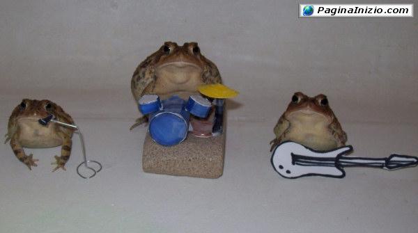 La mia band suona il...frog!