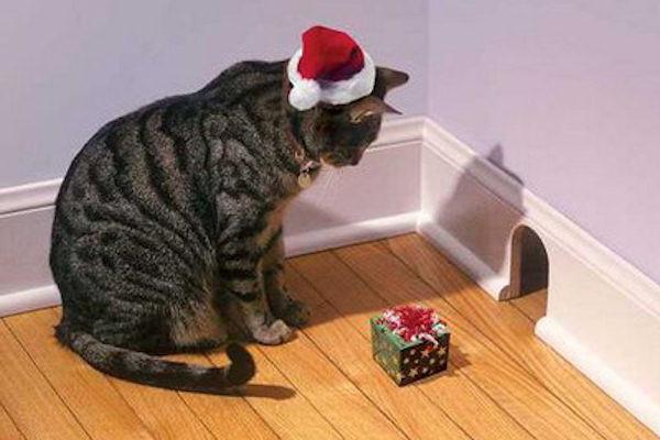 A Natale siamo tutti più buoni...