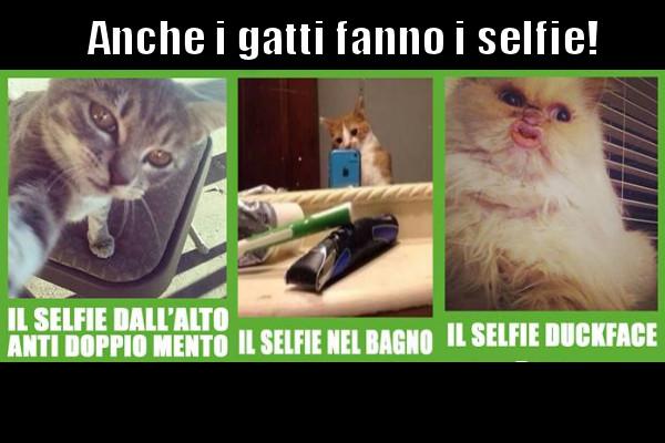 Tipologie di selfie