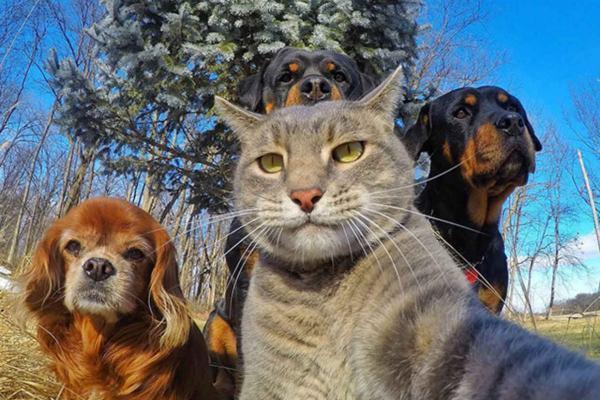 3...2...1...selfie!
