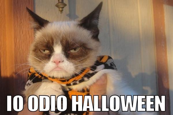 Halloween e i gatti