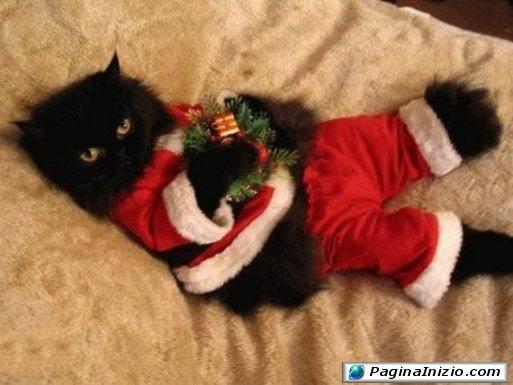 Adoro il relax natalizio...