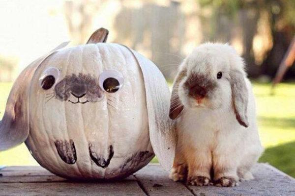Mix tra Halloween e Pasqua