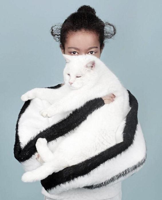 Gatto o maglione?