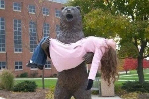 Un orso in città