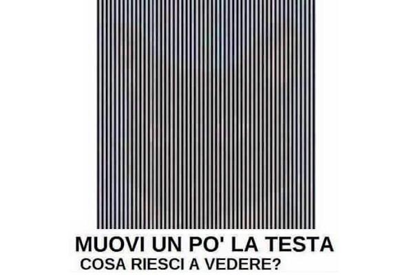 Scopri l'immagine nascosta!