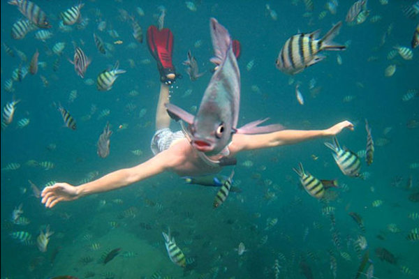 Sub con testa di pesce