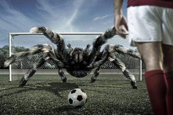 Quando fare goal è impossibile...