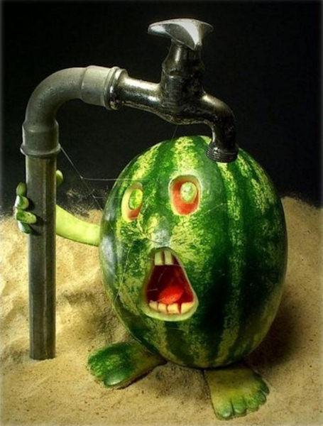Non avrei mai pensato di patire la sete...