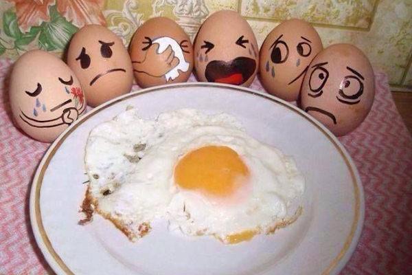 Le uova salutano un amico