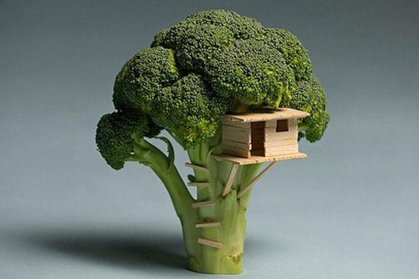 La casa sul broccolo!