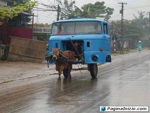 Autobus ecologico!