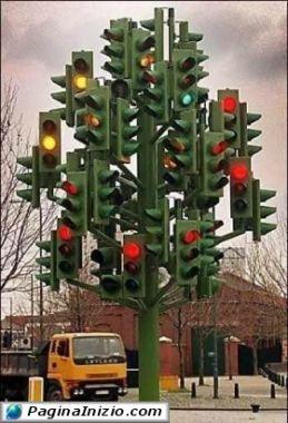 Nuovo albero di Natale!