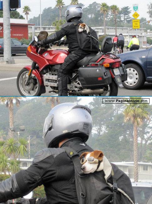 Un motociclista particolare...