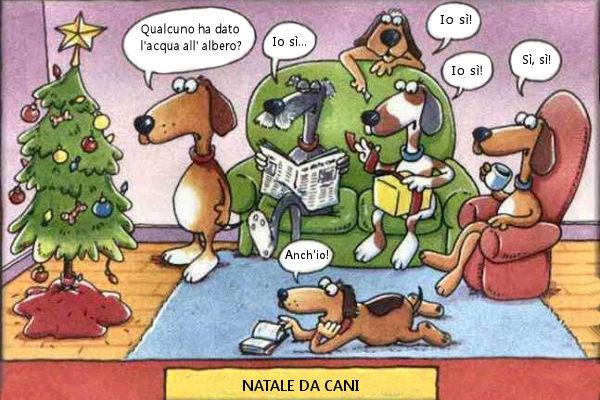 Ecco il vero Natale da cani!