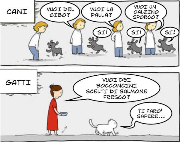 Differenze tra cani e gatti...