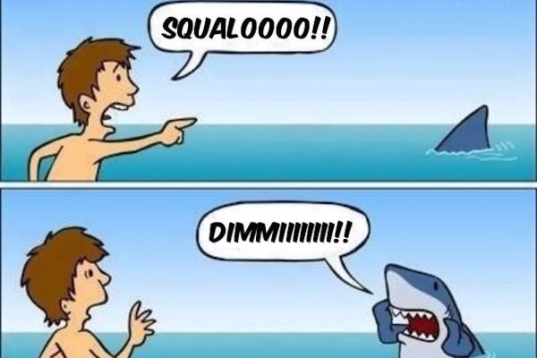 Attenti allo squalo!