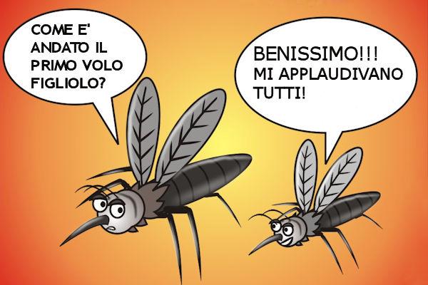 Dialogo tra zanzare