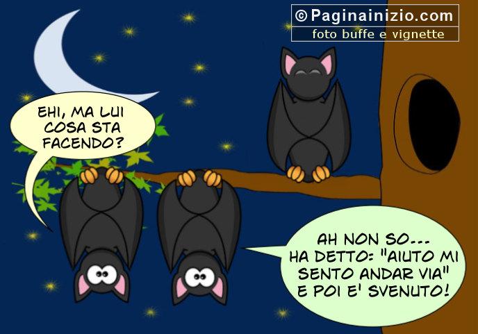 Pettegolezzi tra pipistrelli