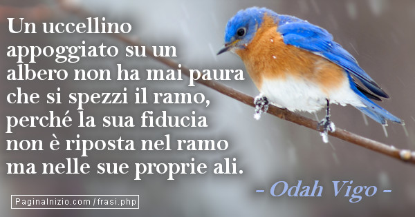 Ben noto Frase Immagine di Odah Vigo HC55