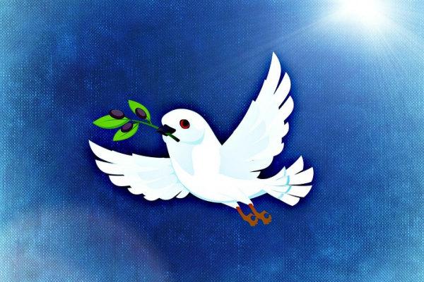 Perché La Colomba Bianca è Il Simbolo Della Pasqua?