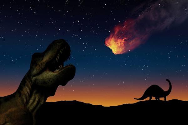L'estinzione dei dinosauri fu provocata probabilmente da un meteorite
