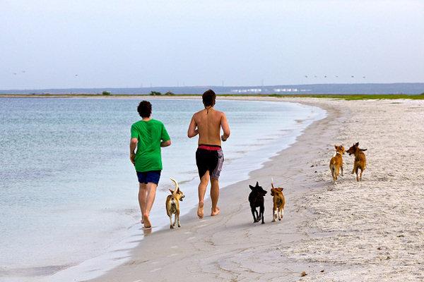 Jogging in spiaggia