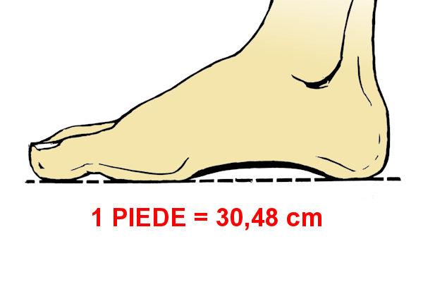 Misura standard di 1 piede