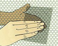 Come riparare una zanzariera - Idee Green