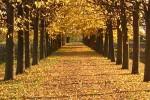 Nell'emisfero australe l'inverno dura circa tre giorni in più della primavera