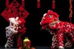 La Danza del Leone è un festeggiamento tipico del Capodanno Cinese