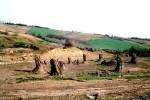 Foresta fossile di Duanarobba (Umbria)