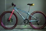 Modello moderno e colorato di Mountain Bike