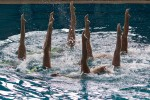 Le squadre di nuoto sincronizzato vanno da 4 a 8 membri