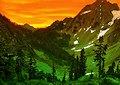 <b>Fuga dalla foresta in montagna - Dramatic mountain forest escape