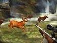 <b>Caccia al cervo - Deer hunter