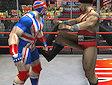 <b>Sfida wrestling - Masters of wrestling