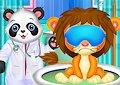 <b>Dottor Panda - Best doctor in animal world