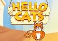<b>Gatto dalla padrona - Hello cats